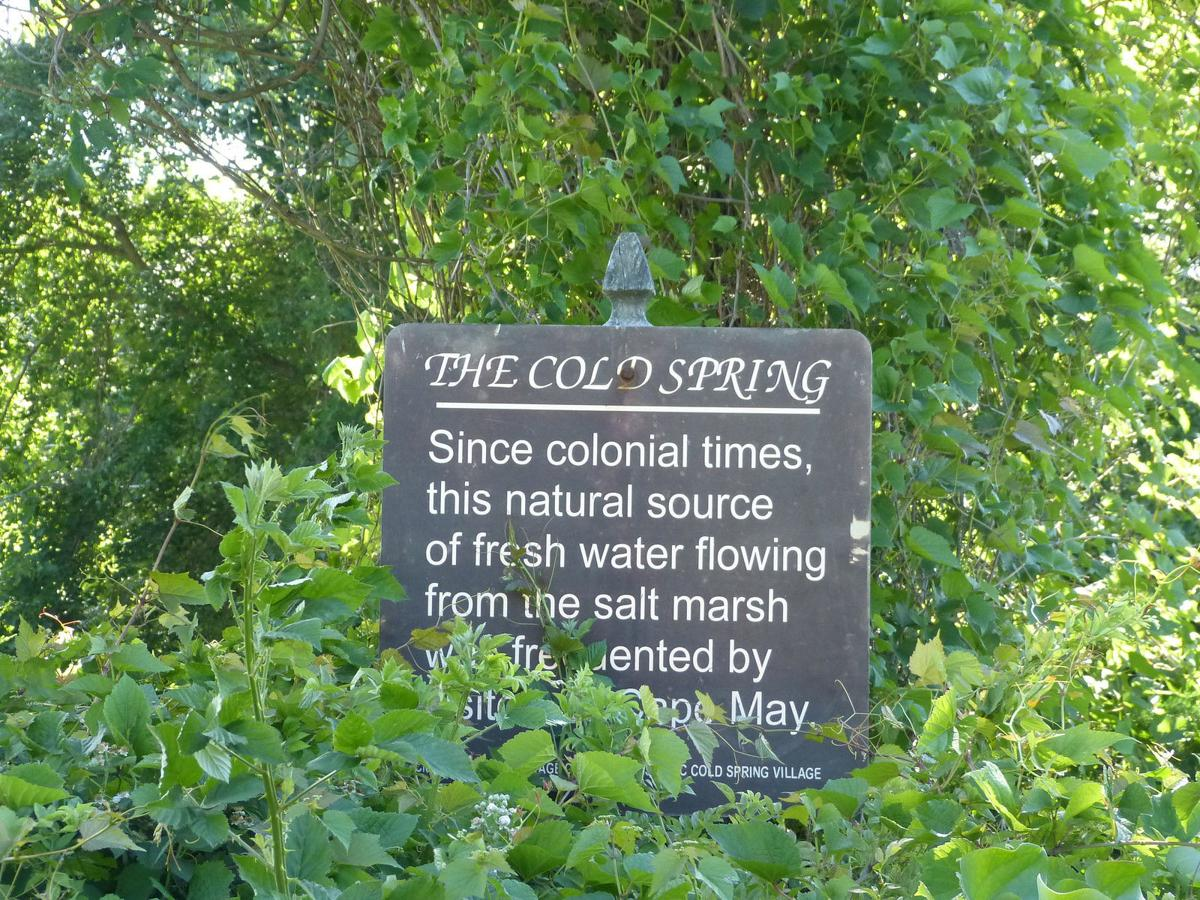 The Cold Spring Sign.jpg