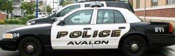 Avalon Police