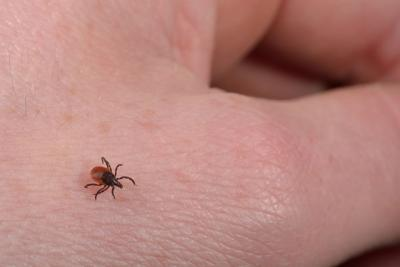 Taking Initiatives to Treat and Prevent Lyme and Tick-borne Illnesses