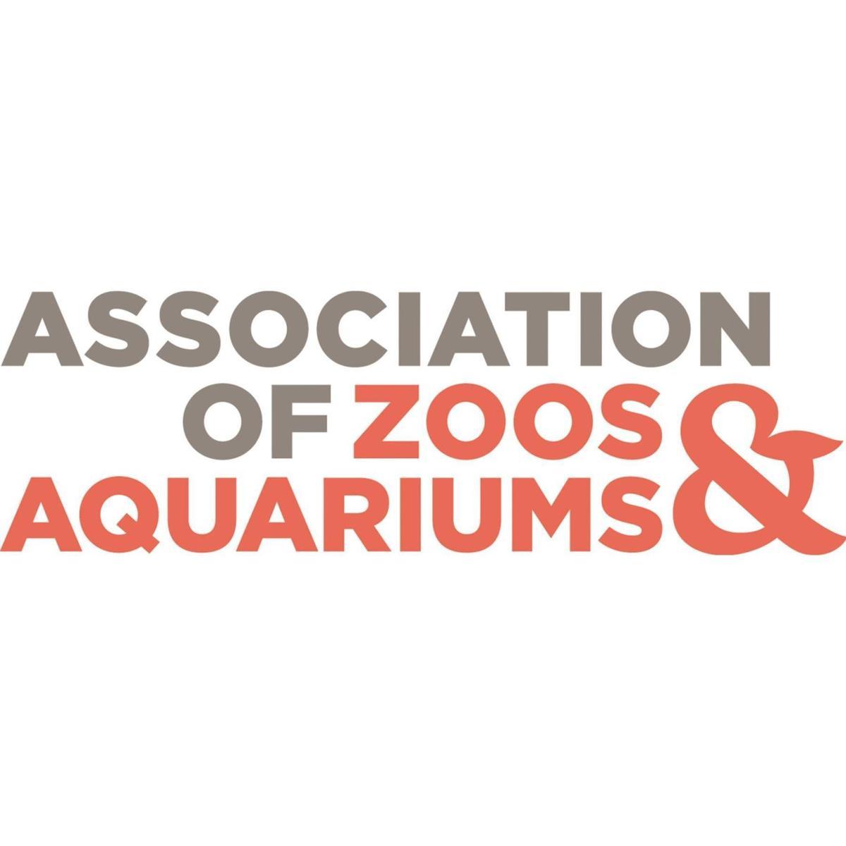 Image result for aza logo