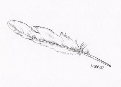 nature 11.22 worn feather