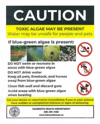 Blue-Green Algae Sign