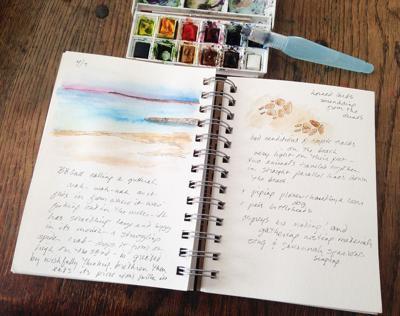 nature 04.12 sketchbook