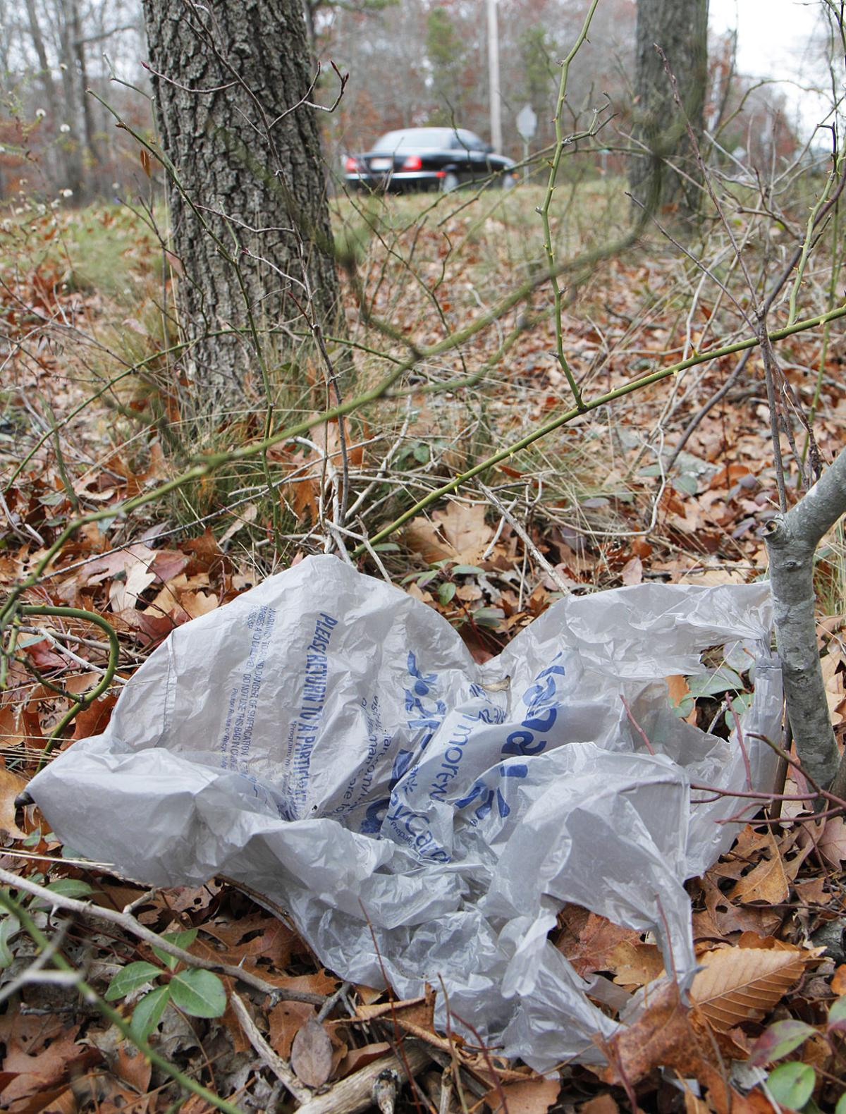 Sandwich Joins Its Neighbors In Banning Single-Use Plastic Bags ...