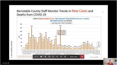 County COVID Data 0820