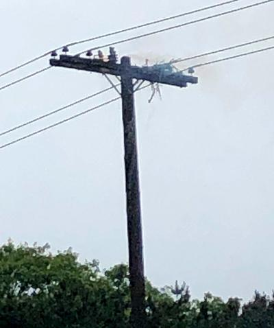 Osprey Nest Fire