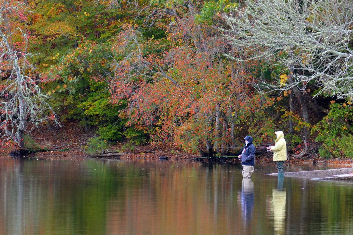 Wakeby Fishing
