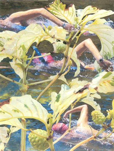 FAC When Swimmers Dream