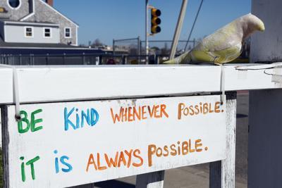 A Few Kind Words