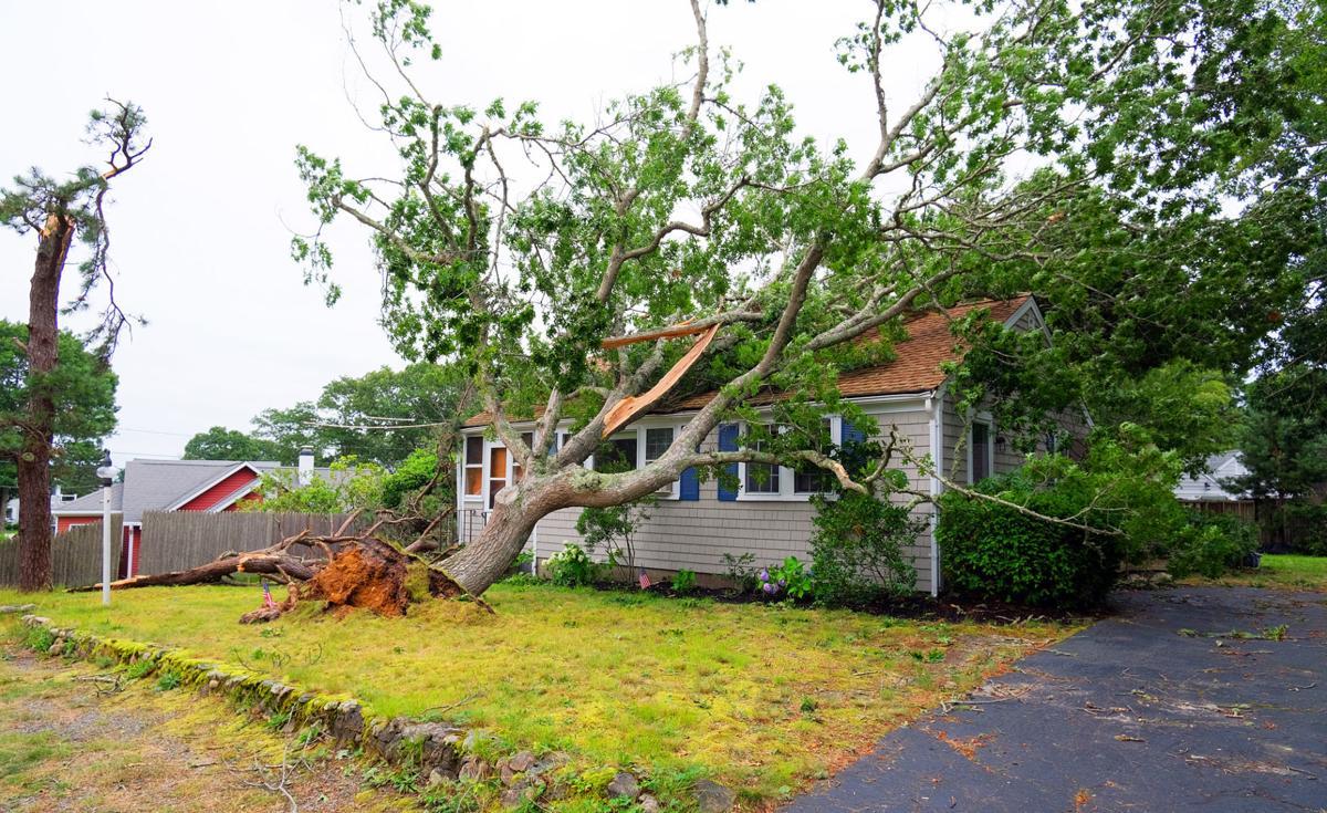 Popponesset Storm Damage
