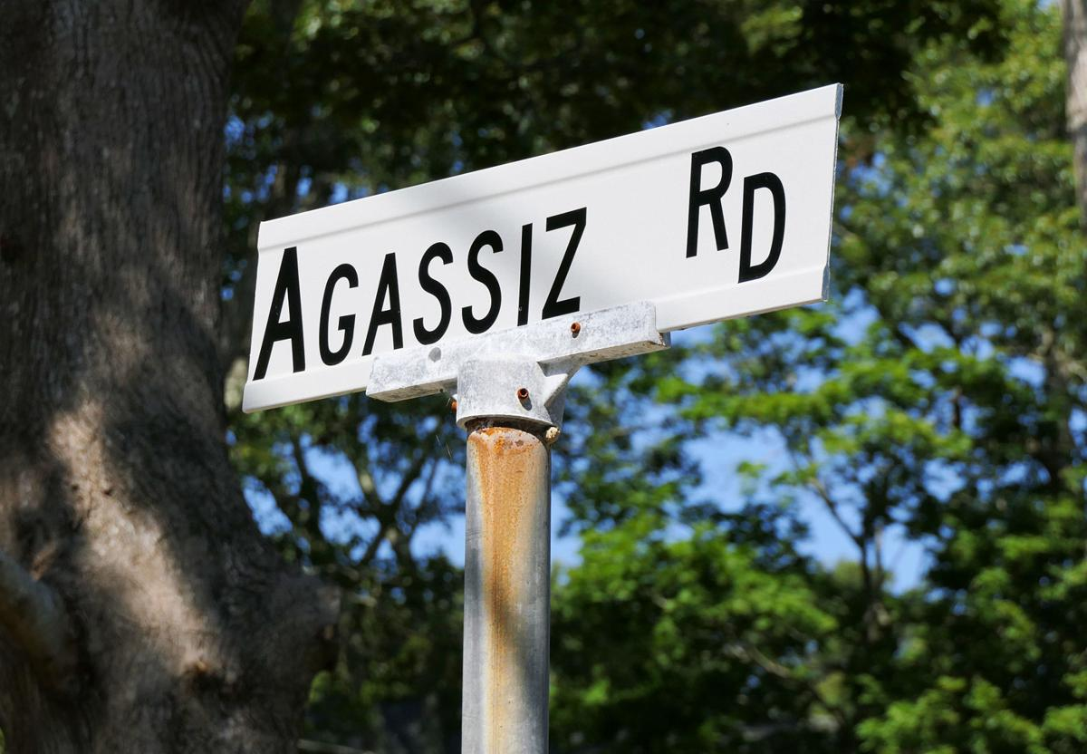Agassiz Road In Woods Hole