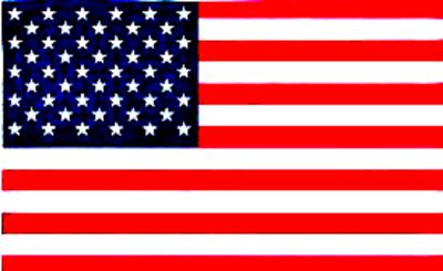 vet flag color