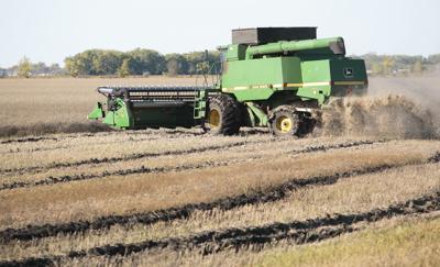 Farmers race to beat next round of precipitation