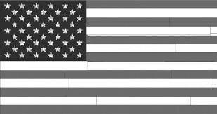 vet flag