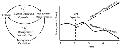 Avoiding capability traps when considering expanding your grazing operation 1