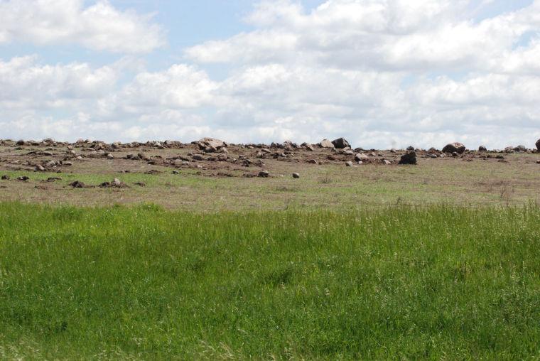 Habitat in crisis