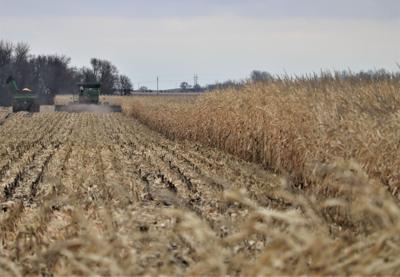 Propane problems make a long harvest even longer