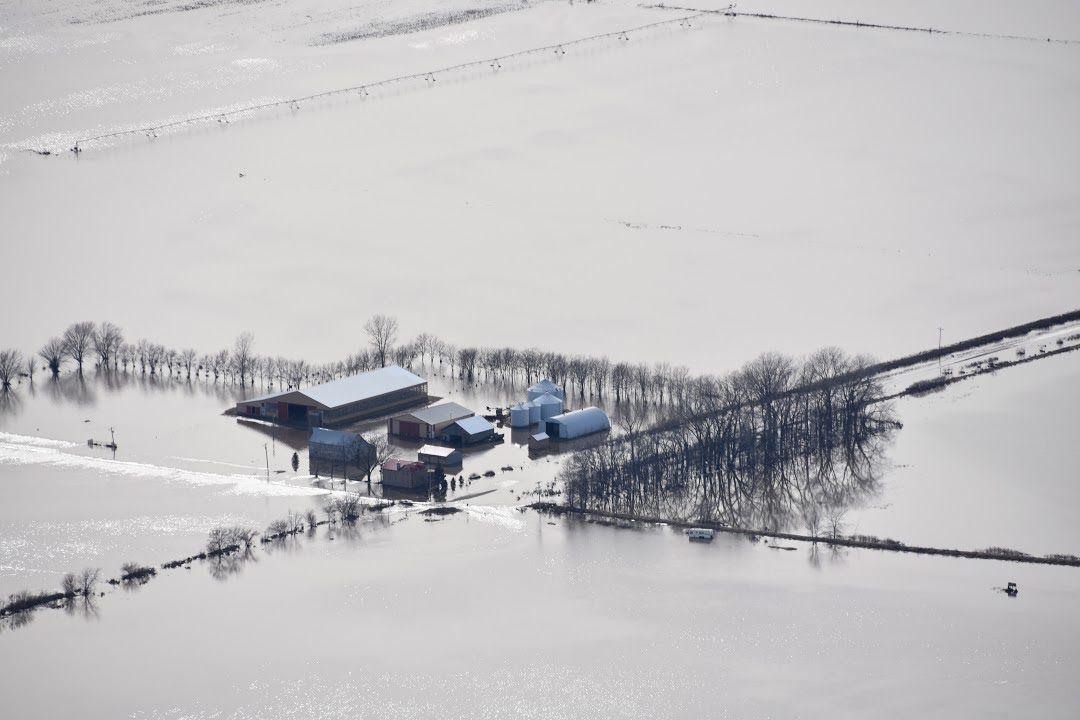Farm near Wakonda