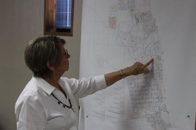 Gloria Hanson - zoning map