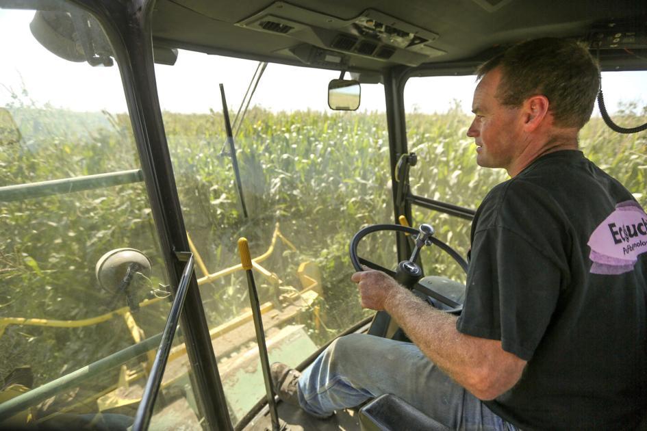 Organic farms increase in Iowa