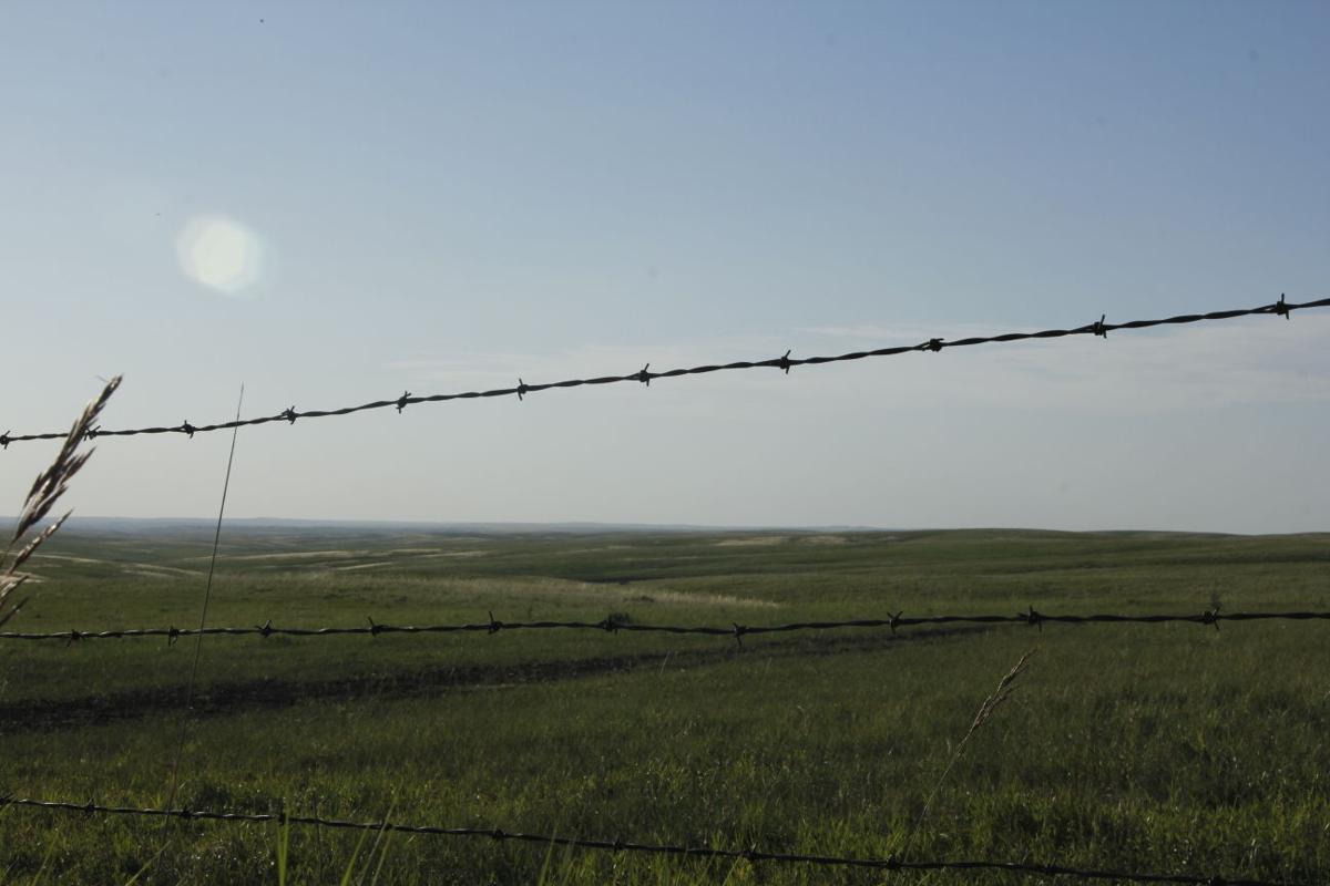 Dakota Life: The Devil\'s Rope | Local News Stories | capjournal.com