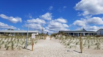 Crews continue dune planting along Bogue Banks