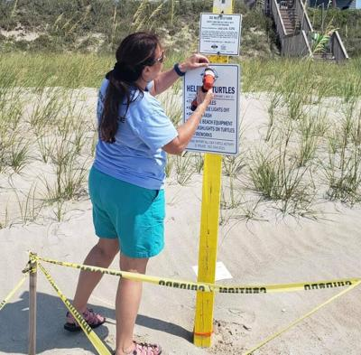 Emerald Isle turtle patrol notes illegal nest tampering