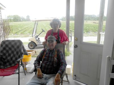 FEATURE: The story of Simpson's Farm in Bettie