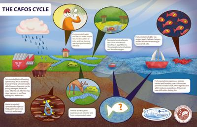 Area Coastal Carolina Riverwatch branch launches water quality program