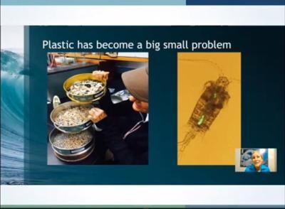 NC Coastal Federation, partners talk combatting microplastic pollution