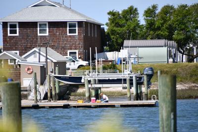 Area marine labs host summer courses online