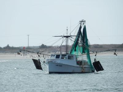 CARES Act provides more than $5M for NC commercial fishing industry
