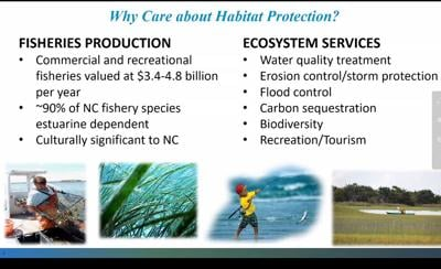 Fisheries managers sending draft coastal habitat protection plan out for public comment