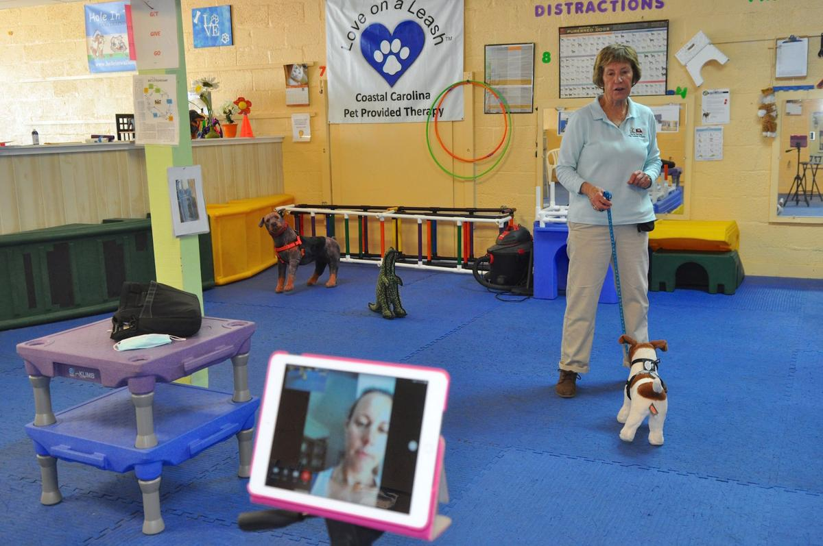 Dog trainer offers virtual classes during pandemic