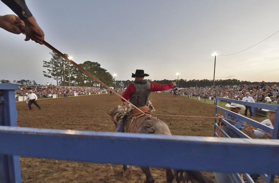 Newport Rodeo 2019 News Carolinacoastonline Com