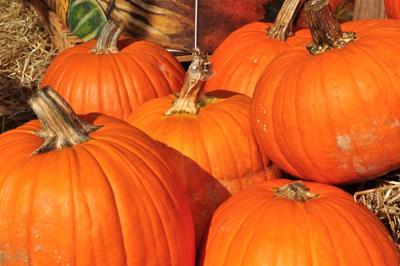 Officials urge caution as residents prepare to celebrate Halloween