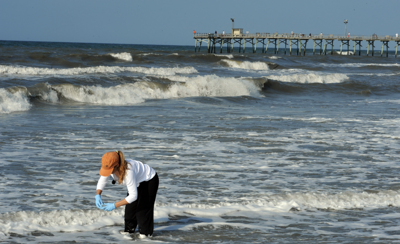 Lab continues water sampling amid pandemic, reports 'excellent' quality at beaches
