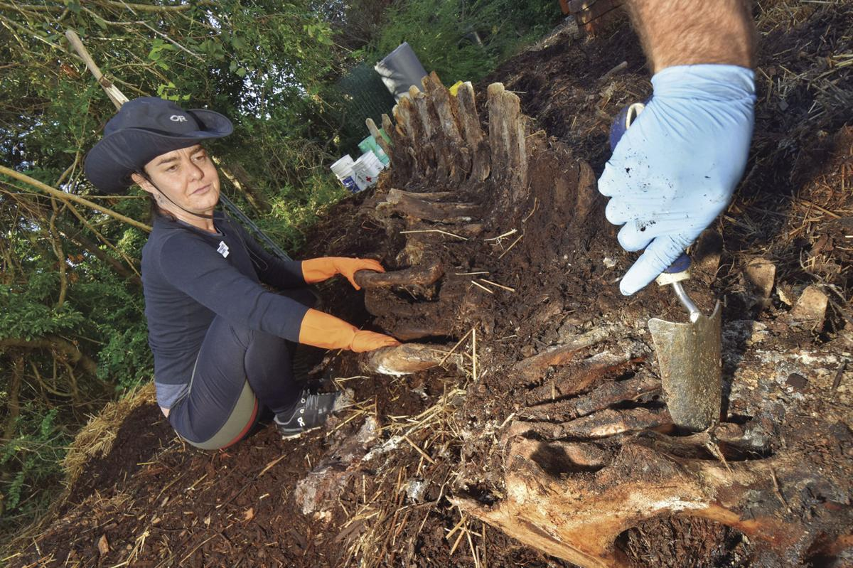 Exhumation underway