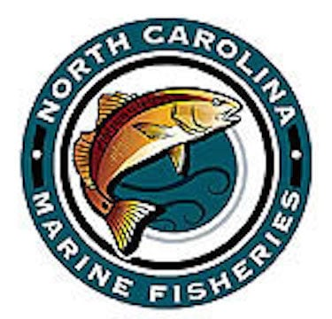 NC Division of Marine Fisheries