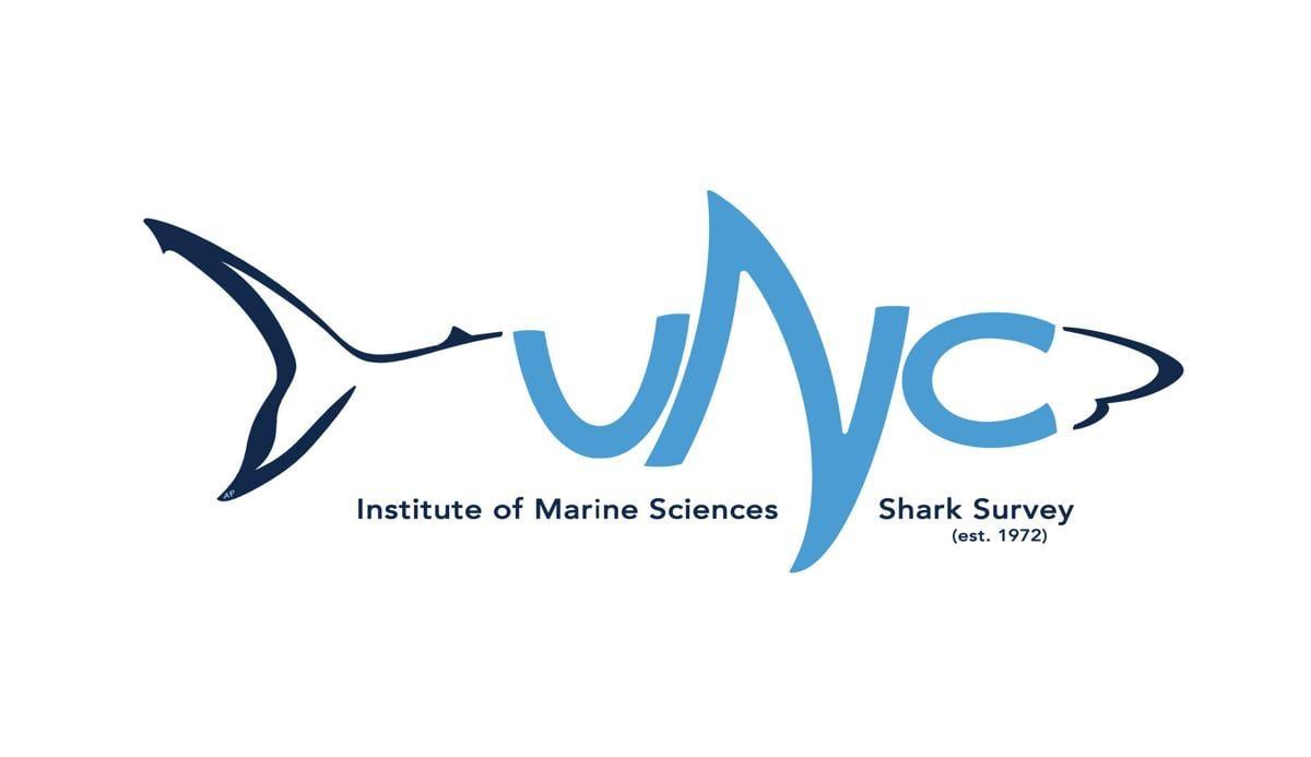 Shark Week 2021: IMS shark survey enters 50th consecutive year
