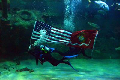 Diver carries flag