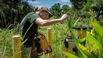 Coastal harm from invading saltwater 'happening right now' - Carolinacoastonline