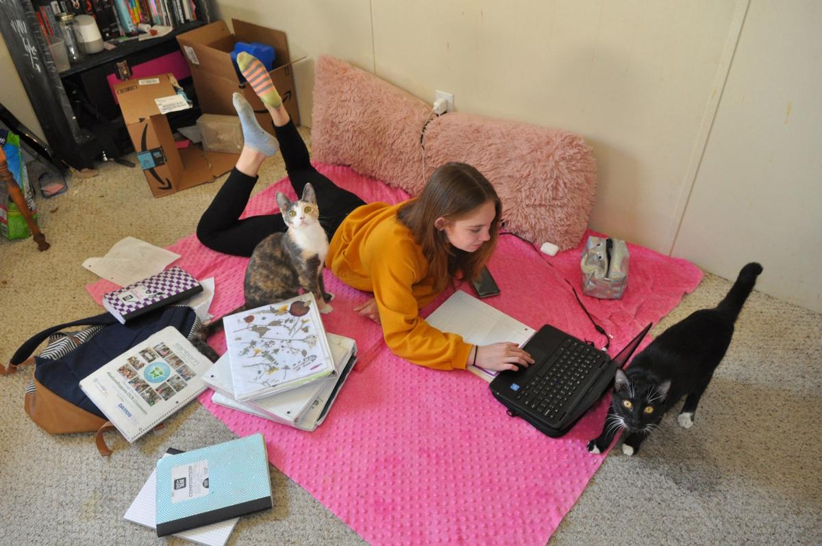 The New Normal Families Schools Adjust To Virtual Education