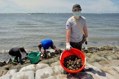 Scouts, volunteers help with Carteret Community College shoreline repairs