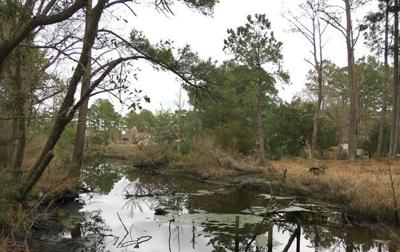Kayak, canoe, paddleboard launch site
