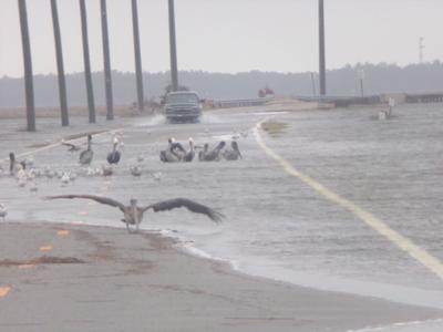 Highway 12 floods during weekend coastal storm