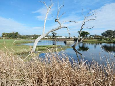 Pine Knoll Shores manager reports new stormwater control measures working as designed