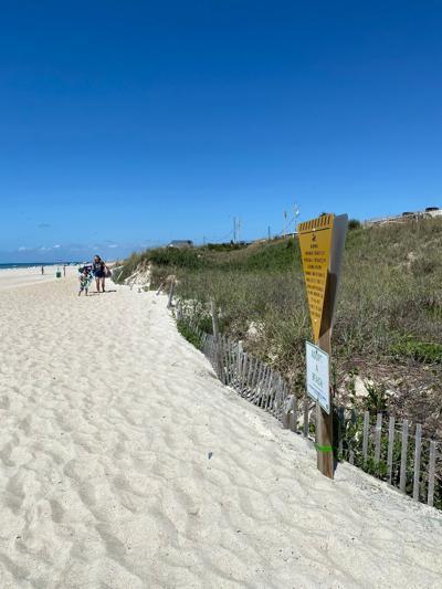 Study focuses on beach nourishment's impact on organisms; long-term implications still unknown