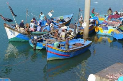 Duke University Marine Lab faculty studying small-scale fisheries
