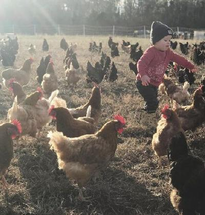 FEATURE: Life on Shenk Family Farm